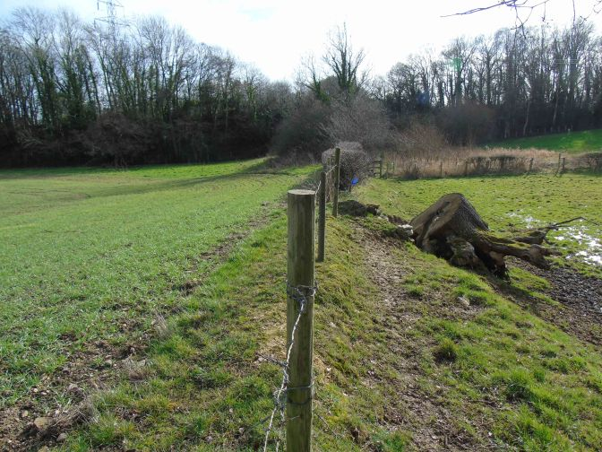 Saved by the railways, Offa's Dyke will survive forever!